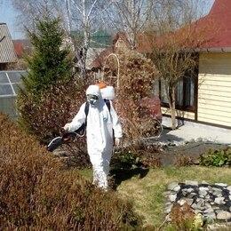Клещевая и гербицидная обработка участка