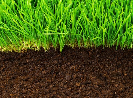 чернозем,почвогрунт,растительный грунт,чернозем купить,песок,торф,гумус,купить грунт,глина,чернозем доставка,плодородный земля,грунт продажа,плодородный грунт доставка,земля доставка,купить грунт,купи