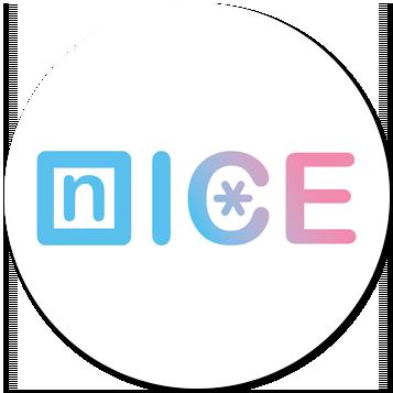 1.Студия ледяного искусства «NICE»