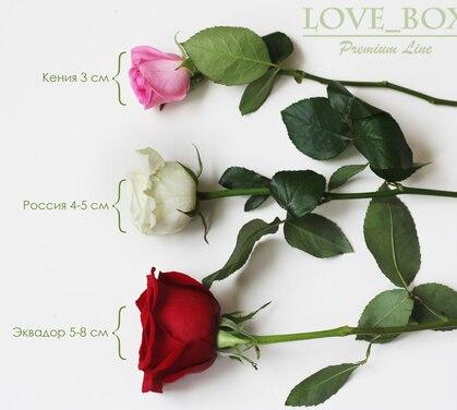 Лучшие розы от Love Box