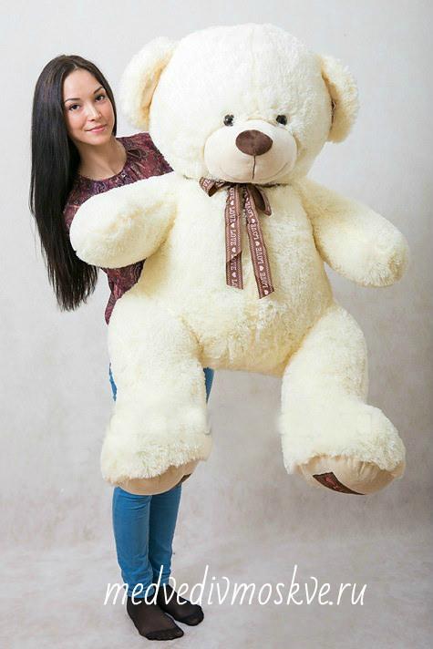 купить медведя