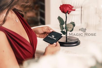 Стабилизированная роза Magic Rose