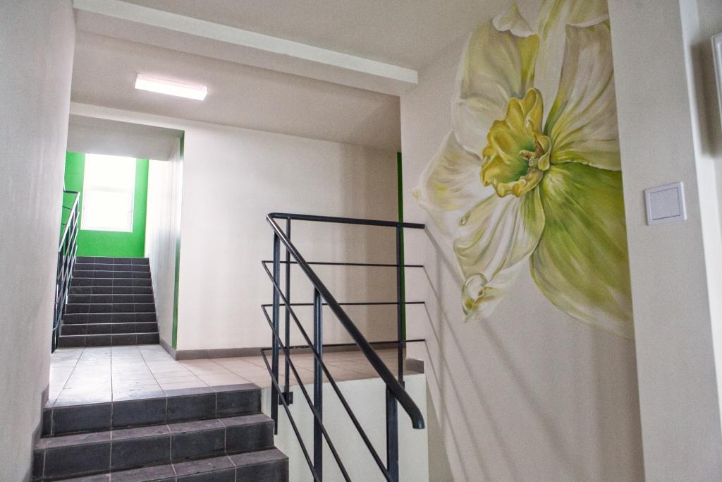 цветы на стенах подъездов