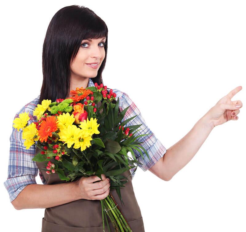 купить тюльпаны оптом в новосибирске