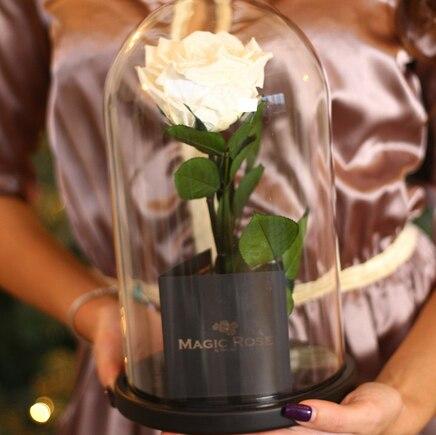 Роза в колбе белая Magic Rose