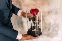 Красная роза в стеклянной колбе Magic rose
