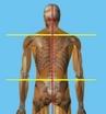 Правка Атланта, метод разблокировки сустава, постановка первого позвонка C1