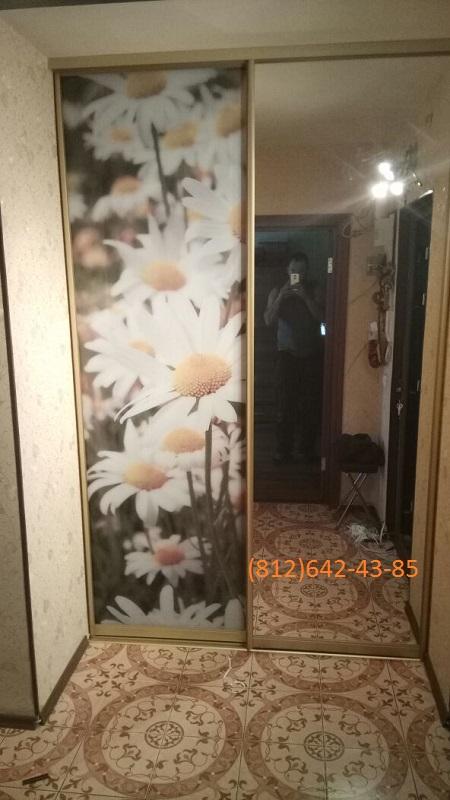 Двери-купе зеркальные